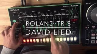 Roland TR-8 Jam Session by David Lied