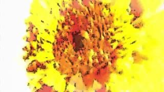 Raul Carrasco Bullets of Love Original Mix Promo
