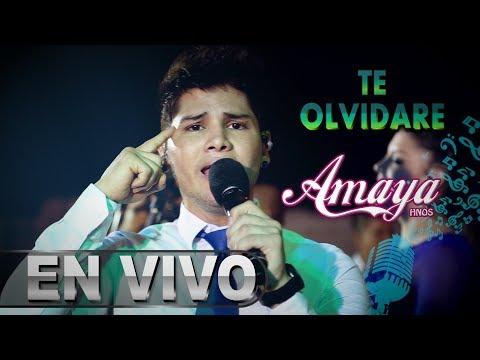 Xxx Mp4 Te Olvidare Amaya Hnos David Del Aguila Concierto 2018 HD 3gp Sex