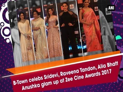B-Town celebs Sridevi, Raveena Tandon, Alia Bhatt, Anushka glam up at Zee Cine Awards 2017