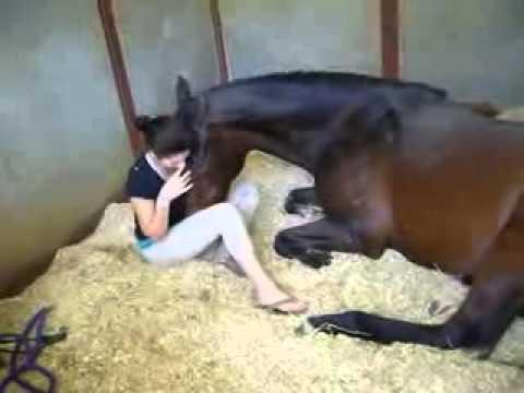 A mulher e o Cavalo caiunaplayboy