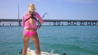 Hammerhead Shark Attacks Florida Tarpon