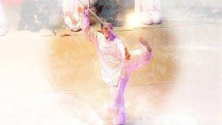 Delphine TRAN - Performance au Festival des Arts Martiaux de Nice 2014