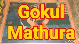 गोकुल (मथुरा) जँहा भगवान श्री कृष्ण जन्म के बाद रहे 11 साल तक