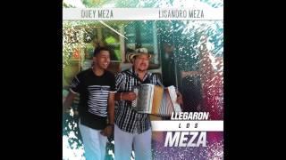 Duey Meza (feat. Lisandro Meza) - Llegaron Los Meza (AUDIO)