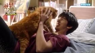 Imaginary Cat Teaser 5 (60 Second)