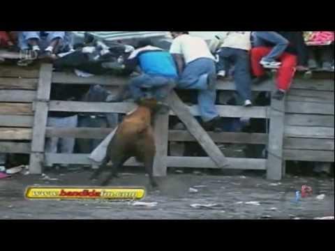 toros de mi pueblo vol 8 9 HD