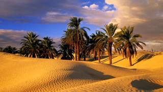 3 Hours Arabian Music | Relaxing Ambient Egyptian Music