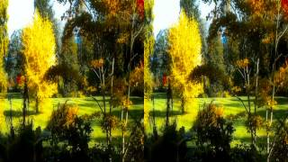 JABLUNKOV 2013 - 3D Full HD stereoscopic /Side by Side/ 1080p