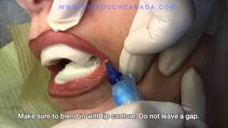 Permanent Makeup - Permanent Lips Tutorial and Demonstration: Before & After - by Lisa