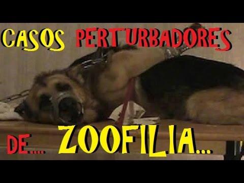 Top Los 6 Casos de Zoofilia más perturbadores de la historia.