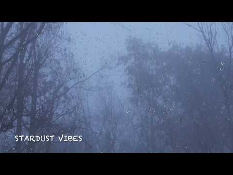 Rain & Thunder Sounds in the Foggy Forest | Thunderstorm Sounds for Sleep, Insomnia & Relaxing