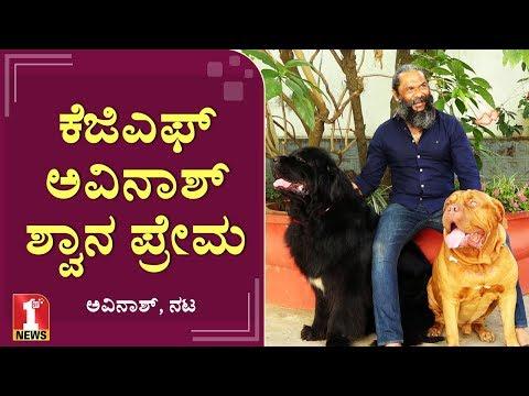 Xxx Mp4 ಕೆಜಿಎಫ್ ಅವಿನಾಶ್ ಪ್ರೀತಿಯ ನಾಟಿ ರುದ್ರ ಕ್ಯೂಟಿ ವೀರ Actor Avinash KGF Movie Villain 3gp Sex