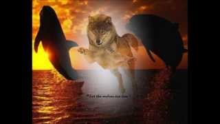 Heroes.......Dolphins & Wolves.....David Bowie