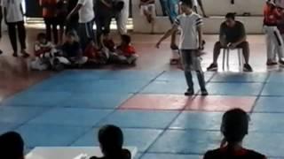 Taekwondo gibo(2)