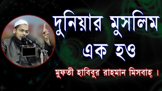 New Bangla Waz Habibur Rahman Mesbah 2017