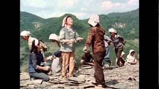Korean Movie Full HD Natok