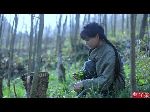 (采野菜)If You Miss the Best Days to Pick Wild Herbs You've Missed the Entire Spring Liziqi Channel