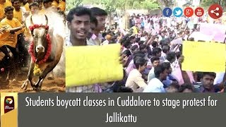 Students boycott classes in Cuddalore to stage protest for Jallikattu