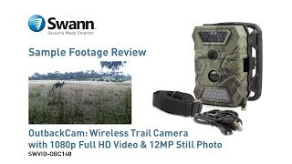 Outback Cam: Sample Footage Review - Wireless Trail Camera, 1080p Video w/ Audio, 12MP Photo, Night