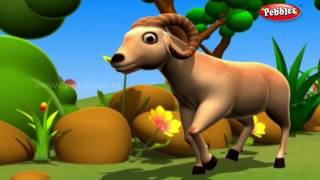 Jungle Stories Hindi For Children | हिंदी नैतिक कहानियाँ | Hindi Moral Stories Collection For Kids