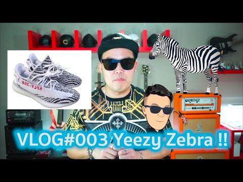 Xxx Mp4 VLOG 003 Zebra Boost เจ้ารองเท้าตัวป่วน A Day With Goody 3gp Sex