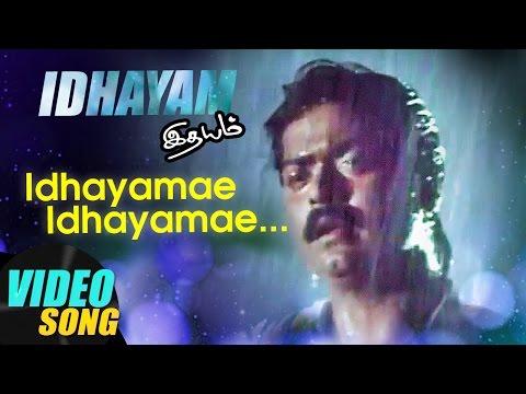 Xxx Mp4 Idhayamae Full Video Song Idhayam Tamil Movie Songs Murali Heera Ilayaraja Music Master 3gp Sex