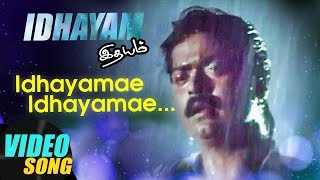 Idhayamae Full Video Song | Idhayam Tamil Movie Songs | Murali | Heera | Ilayaraja | Music Master