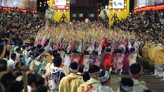 AWA ODORI - IS JAPAN COOL? MATSURI - 祭 (阿波踊り/徳島)