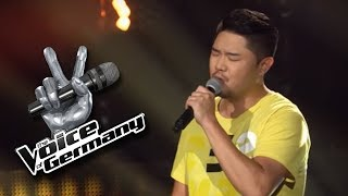 Eagles - Desperado   Dae-On Jung   The Voice of Germany 2017   Blind Audition