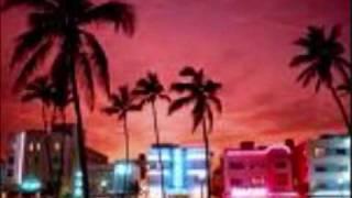 I'm in Miami Bitch (Remix)