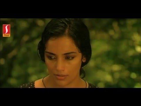 Xxx Mp4 Paleri Manikyam Oru Pathirakolapathakathinte Katha Part 11 Swetha Menon Bath Scene 3gp Sex