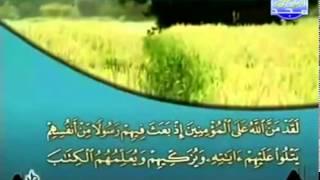 الجزء الرابع (04) من القرآن الكريم بصوت الشيخ خليفة الطنيجي