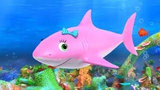 Canción del Tiburón | Canciones para Niños | Dibujos Animados de Animales | Little Baby Bum Júnior