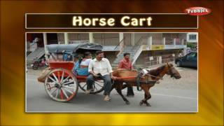 Learn English Words (Spelling)   A boat Ride, A Car Ride, Airport & Amusement Park