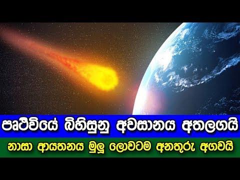 Xxx Mp4 පෘථිවියේ බිහිසුනු අවසානය අතලගයි Nasa Working To Stop An Asteroid From Hitting Earth In 2135 3gp Sex