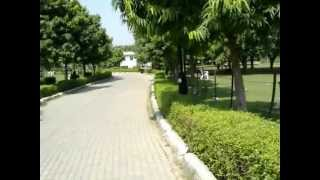 Japnese park (swarn jyanti park )rohini sector-10 .delhi