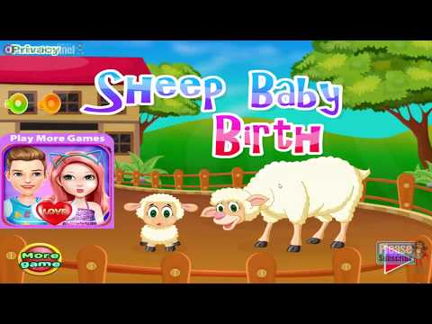 Sheep Baby Birth / Libii Games / Education / Children / Baby / Android Gameplay Video