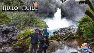 Reserva de la Biósfera Huilo Huilo | Chile #24