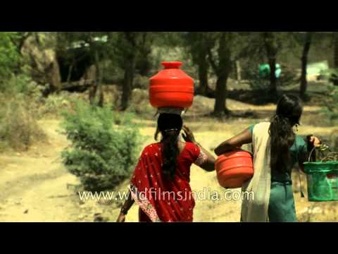 Women balancing pots of water from a well in Manegaon village