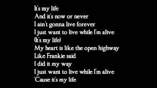 Bon Jovi - Its my life - lyrics