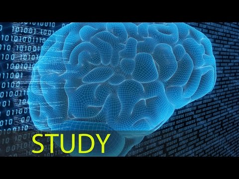 3 Hour Focus Concentrate Study Music Focus Music Alpha Binaural Waves ☯343