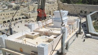 What Will the Messiah do in the Third Temple?  Rabbi Tovia Singer's Answer might surprise you