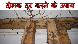 दीमक से छुटकारा पाने के घरेलू उपाय   How To Get Rid Of Termites Naturally