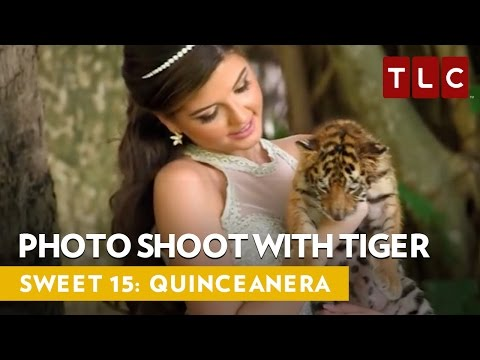 Exotic Photo Shoot With Baby Tiger | SWEET 15: QUINCEANERA