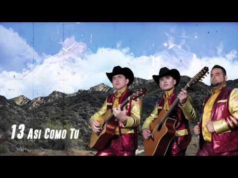 Xxx Mp4 Asi Como Tu Los Plebes Del Rancho De Ariel Camacho DEL Records 2016 3gp Sex