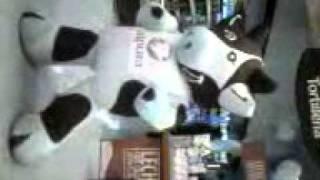 vaca alpura michael jackson.3gp