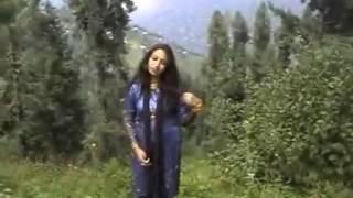 AFSHAN ZAIBI - YouTube