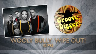 Groove,Digger! -  Wooly Bully Wipe Out! - Musiknacht Kirchheim 2016 (live)