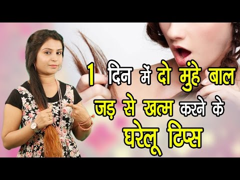 1 दिन में दो मुँहे बाल जड़ से खत्म करने के घरेलू टिप्स Balon Ko Majbut Banaye | Hair Care Tips